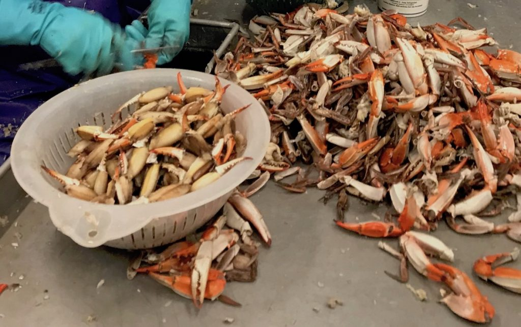 Carefully picking crab claws at Louisiana Blue Crab.
